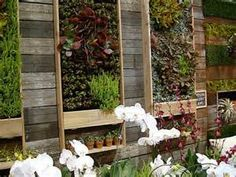 outside Living Garden Wall - Bing images