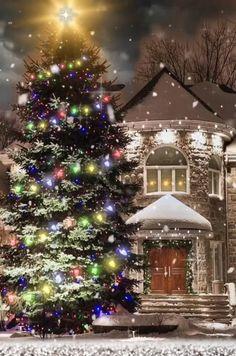 Christmas Tree Gif, Merry Christmas Wallpaper, Merry Christmas Pictures, Christmas Scenery, Merry Christmas Wishes, Christmas Nativity Scene, Christmas Greetings, Christmas Lights, Christmas Decorations