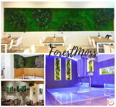 Outdoor Decor, Design, Home Decor, Environment, Decoration Home, Room Decor, Interior Decorating