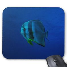 Mousepad featuring a batfish swimming in the crystal blue waters of the Coral Sea on Australia's Great Barrier Reef. #coral #reef #ocean #sea #batfish #underwater #greatbarrierreef #coralsea #coralreef #nature