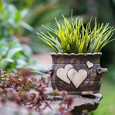 MT Keramika - Výrobky Beginner Pottery, Pottery Pots, Cement Art, Ceramic Flower Pots, Pottery Designs, Hobbies And Crafts, House Plants, Planter Pots, Sculptures