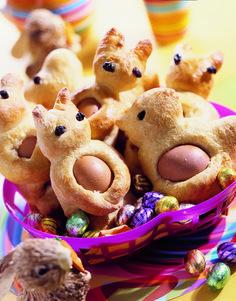 Broodhazen en -eenden