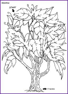 i am the vine ; you are the branches coloring sheets for