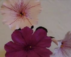 Making Crepe Paper Petunias - crimping technique useful for other flowers