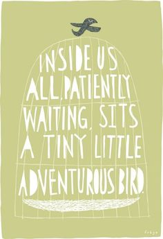 ...a tiny little adventurous bird