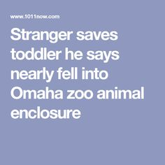 Stranger saves toddler he says nearly fell into Omaha zoo animal enclosure