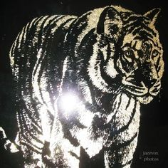 VINTAGE Old TIGER CAT Animal ART BLACK STENCIL SILVER GLITTERS Glass Wood Frame $198 ... we sell more VINTAGE HOME DECORATIONS at http://www.TropicalFeel.com