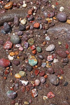 Pebbles on the shore – a geologist's dream