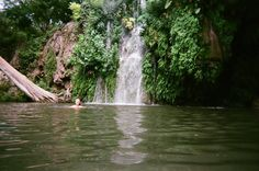 swimming at a natural water hole in Texas (Krause Springs)