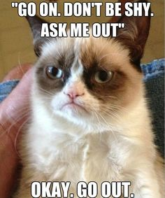 Grumpy Cat Anti-Pickup Lines 3
