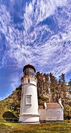 Heceta Head Lighthouse - Florence, Oregon Can I just live here? Wyoming, Florence Oregon, Puerto Rico, Lighthouse Lighting, Oregon Coast, Oregon Usa, Lighthouse Pictures, Beacon Of Light, Oklahoma