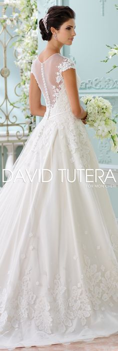 Wedding Dresses Spring David Tutera Spring And