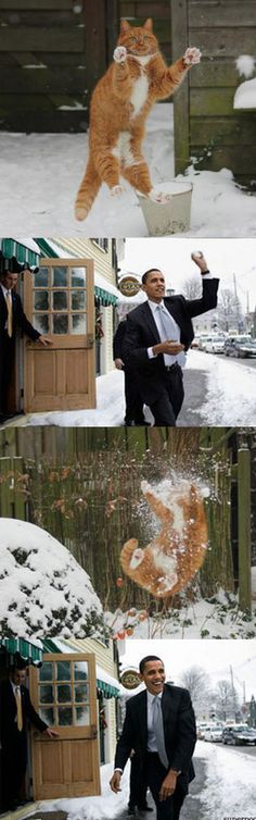 Snowball Fight - The President gets blamed for everything, so why not laugh at a funny too.