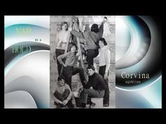Corvina, Youtube, Nap, Movie Posters, Movies, Films, Film Poster, Cinema, Movie