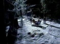So hot horse romantic (Горячая романтика) Budlight commercial