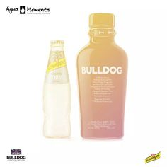 Agua moments bulldog and Schweppes