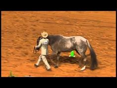 """Showmanship Tip: Executing a turn too slowly decreases the overall flow of the pattern. But executing a turn too fast can sacrifice accuracy, especially on the """"shut off"""" at the end of the turn. Now that you know all about #horseshowing in #showmanship, you're ready to step into the ring! Visit http://aqha.com/Showing.aspx to see how you can get involved."""