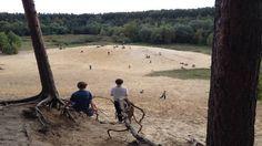 Sandgrube im Grunewald   Ausflug nach Berlin. 20 min. zur S-Bahn