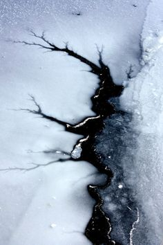 Icewater running through these veins by lynelle https://www.flickr.com/photos/nelliejoy7/