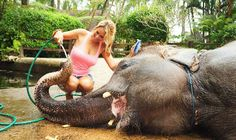 things to do in Bali - Taro Elephant Safari Park, near Ubud