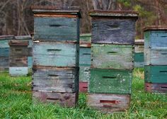 Bee boxes - want to move to the country so I can have bees!
