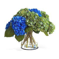 Blue green hydrangea flowers.