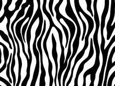Zebra print photo zebraprint.jpg