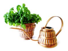 Midcentury hammered copper watering can & planter for indoor plants