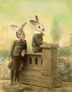 Shop for easter on Etsy, the place to express your creativity through the buying and selling of handmade and vintage goods. Silly Rabbit, Rabbit Art, Beatrix Potter, Illustrations, Illustration Art, Some Bunny Loves You, Bunny Art, Funny Bunnies, Animal Heads