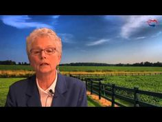 Video: Refugee Resettlement of Muslims to America – Taxpayer Funded Hijra
