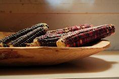 Monsanto no logró vetar al juez que suspendió siembra de maíz transgénico enMéxico