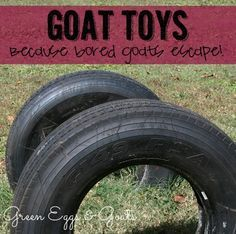 """Specialty"" Goat Toys because bored goats escape! Easy ideas for creating a goat playground! My goats would love this!"