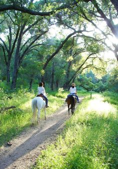Horseback Trail Ride for Two: Ojai Valley Trail Riding Company