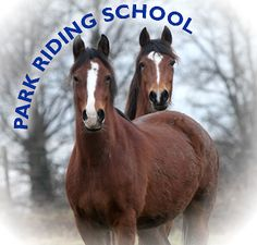 Park Riding School is a riding school located in Lincoln. It is a safe and enjoyable place for riders of all ages and abilities to improve their skills. Riding School, The Locals, Lincoln, Equestrian, Age, Horses, Boys, Animals, Baby Boys