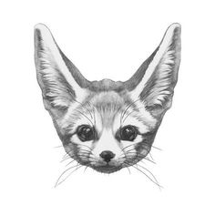 Art Print: Original Drawing of Rabbit. Isolated on White Background by victoria_novak : Fox Drawing, Drawing Tips, Fenic Fox, Lower Arm Tattoos, Find Art, Framed Artwork, Cool Tattoos, Arms, Kawaii