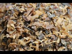 ▶ Irish Moss Seaweed, A Nutritious Thickening Agent - YouTube