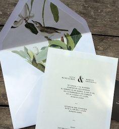 inthesky - modelo botanica