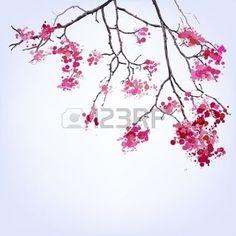 branche cerisier japonais: Spring Blooming Sakura branche de taches de fond