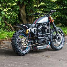 Harley XL883R by Shaw Speed   Bike EXIF