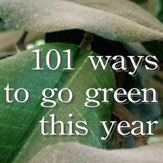 Did resolve to be more environmentally friendly this year? These 101 ways to go greener this year will surely get you started on an eco-friendly lifestyle.