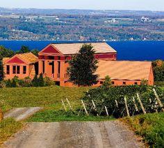 Lamoreaux Landing Wine Cellars.  Enjoy the winery's lovely view of Seneca Lake.