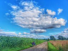 Beautiful morningride to the office! 50 km to get power for the day!💪🚴😀  .  #commuting #bicycle #fahrrad #cycling #riding #biketowork #bikepacking #biketour #biketouring #bikewander #landscape #bike2work #morningride #mdrza #mitdemradzurarbeit #fitness #fahrradfahren #overnighter #velo #travelbike #picoftheday #instamood #igers #nature