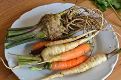 domácí vegeta