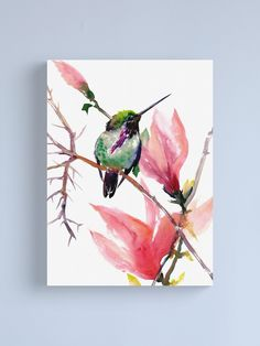 """""""Little Hummingbird and Pink Magnolia"""" Canvas Print by surenart 