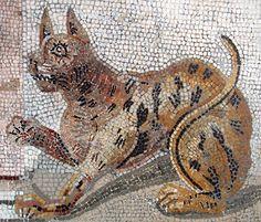 Chat, mosaïque romaine, musée national d'archéologie, Casa del Fauno, Pompéï, Naples.