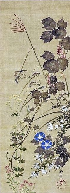 Suzuki Shuitsu (1823-1889) 鈴木守一 Morning Glories, after Sakai Hoitsu. Japanese hanging scroll. Rinpa School. Nineteenth century.