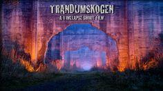 Trandumskogen - A timelapse short film on Vimeo