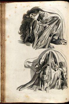 "Govard Bidloo (1649-1713) [anatomist] Gérard de Lairesse (1640-1711) [artist] ""Anatomia Humani Corporis""."
