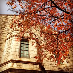 Autumn at Ewha Womans University in Seoul
