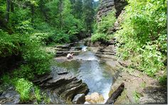 Devils Bathtub is one of the best hikes in Spearfish Canyon, South Dakota. Great for kids. if you have time to do some hiking - do this one. South Dakota Vacation, South Dakota Travel, Best Places To Camp, Places To See, Spearfish Canyon, Road Trip To Colorado, Rapid City, Best Hikes, Summer Travel